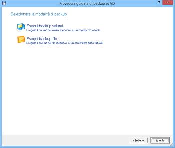 <b>Procedura guidata di backup su disco virtuale</b><br /> La procedura guidata aiuta a eseguire il backup di un intero disco rigido, di una determinata partizione o di singoli file e cartelle in un contenitore disco virtuale.