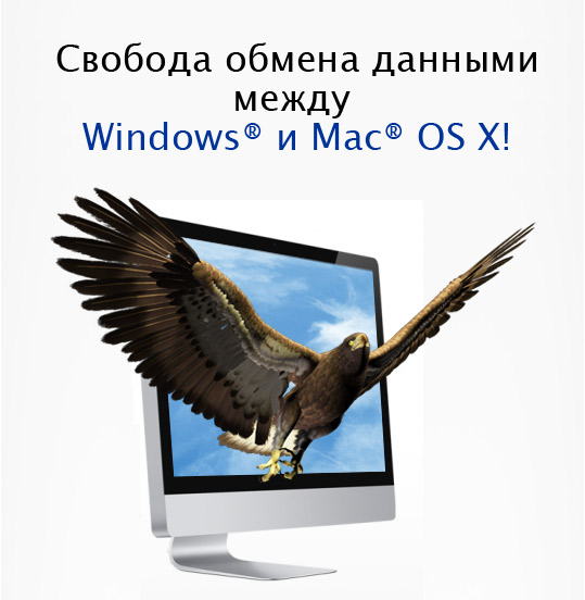 скачать драйвер ntfs для mac